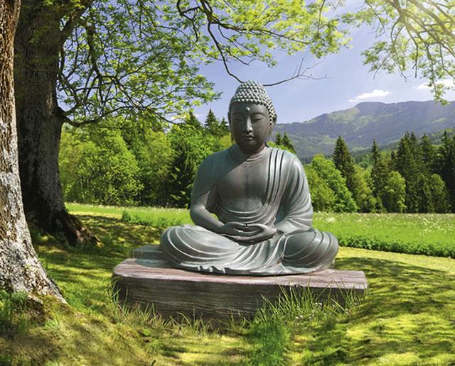 Raffaella dallarda presenta l 39 incontro benessere for Giardini giapponesi milano